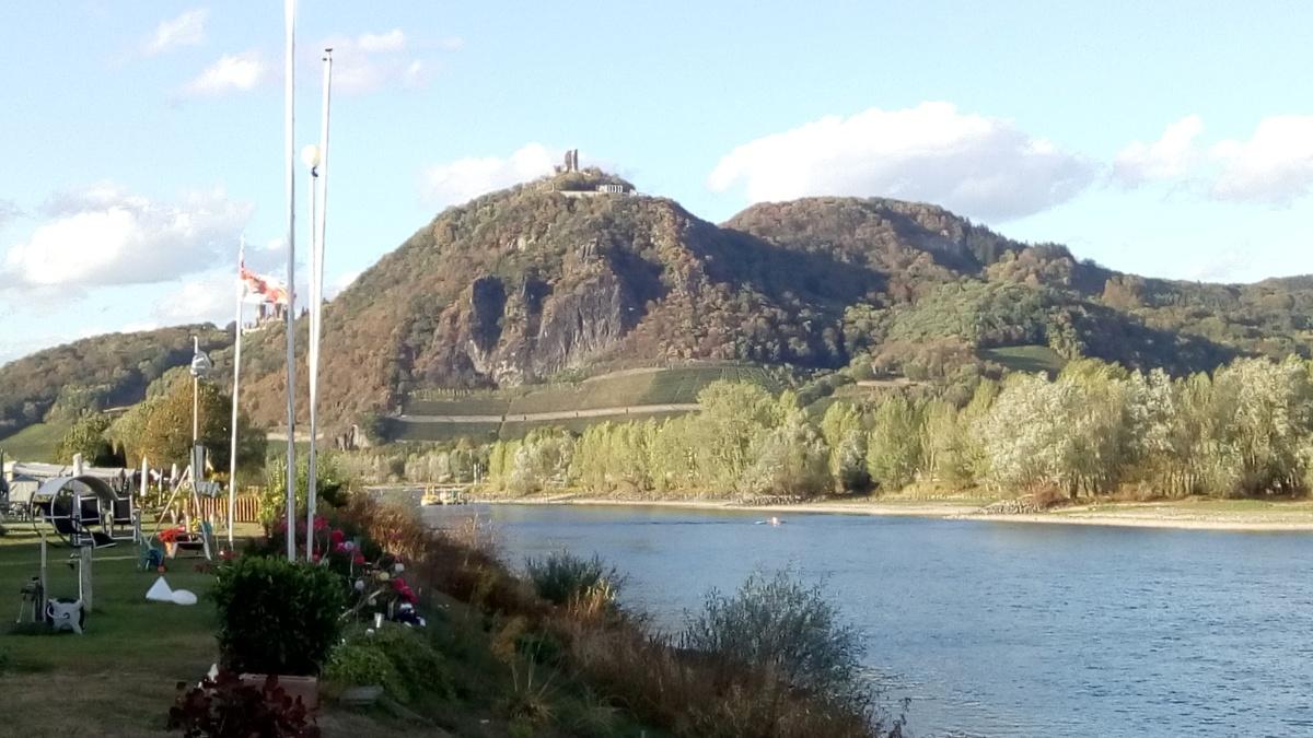Lieblingsort am Rhein…