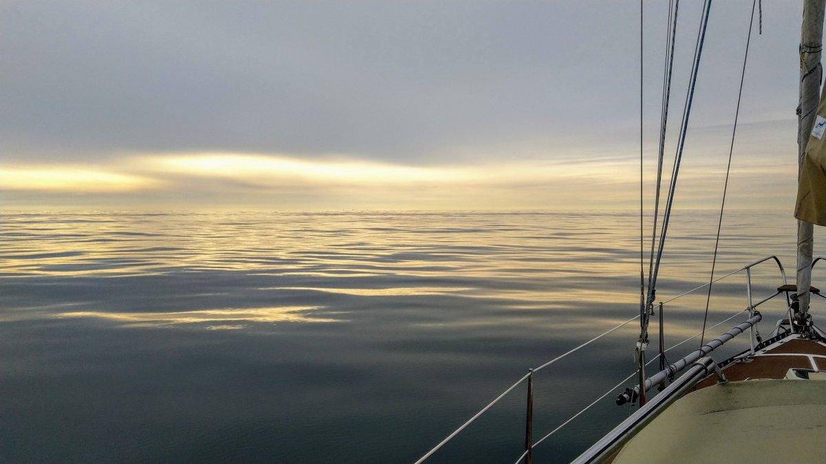 Von Helgoland heimwärts